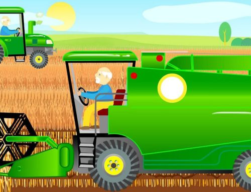Bajka Traktor i Kombajn – Tractor and Combine Harvester during the Harvest | Farm Work for Kids