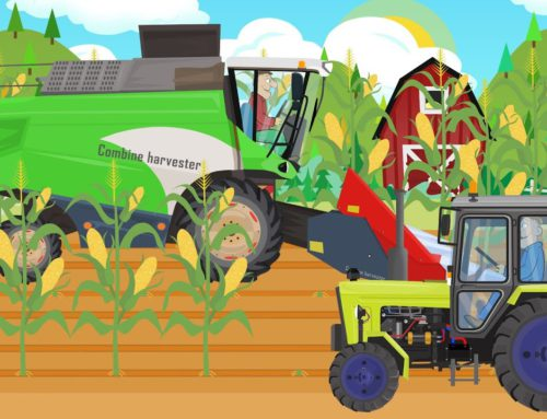 FARM WORK – Tractor and Corn Harvester for KIDS | Cartoons Tractors – Bajki Traktory dla Dzieci
