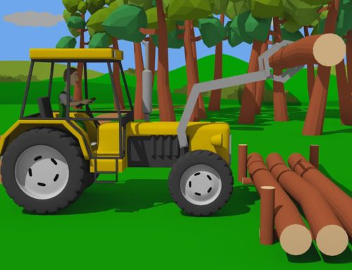 DOG Kennel and TRACTOR with Front Loader – Tree Felling | Tractor in the Sawmill